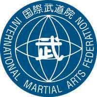 MMA Group Modern Martial Arts.
